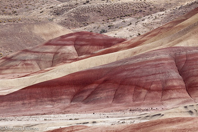 OR John Day Fossil Beds